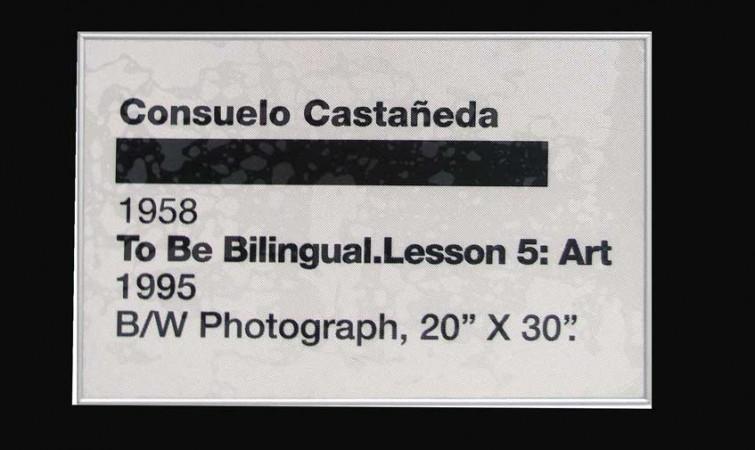 8--Consuelo-Castañeda-2