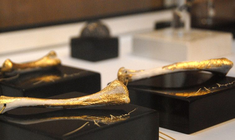huesos-de-mar-sofia-aguila