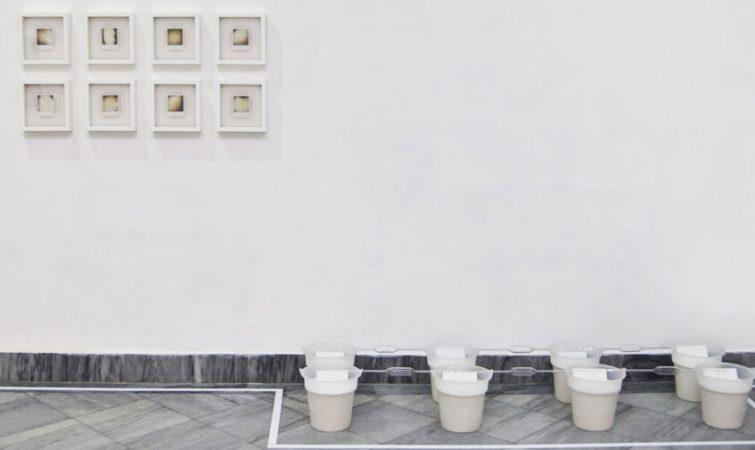porcelamo-cavindi-gorva-2015